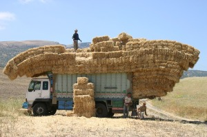 morocco-842660_640